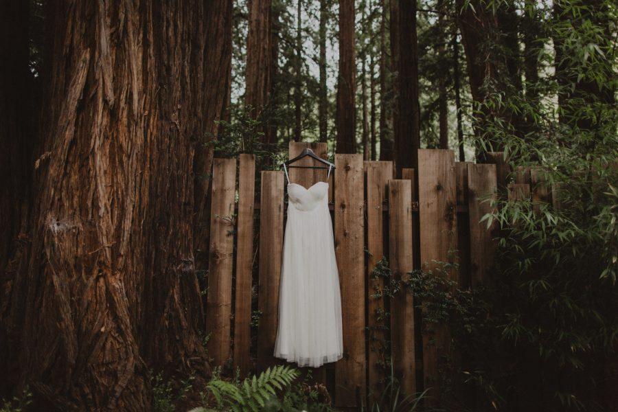 Married In The Woods At Glen Oaks Big Sur