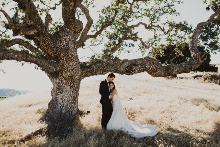 Summertime Holman Ranch Wedding