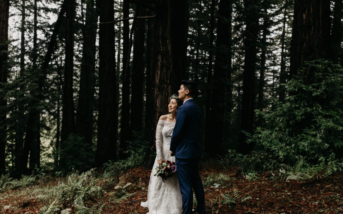 Eloping in the Redwoods